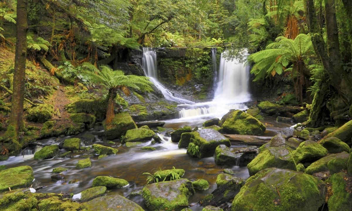Rompecabezas Recoger rompecabezas en línea - Tasmanian waterfall