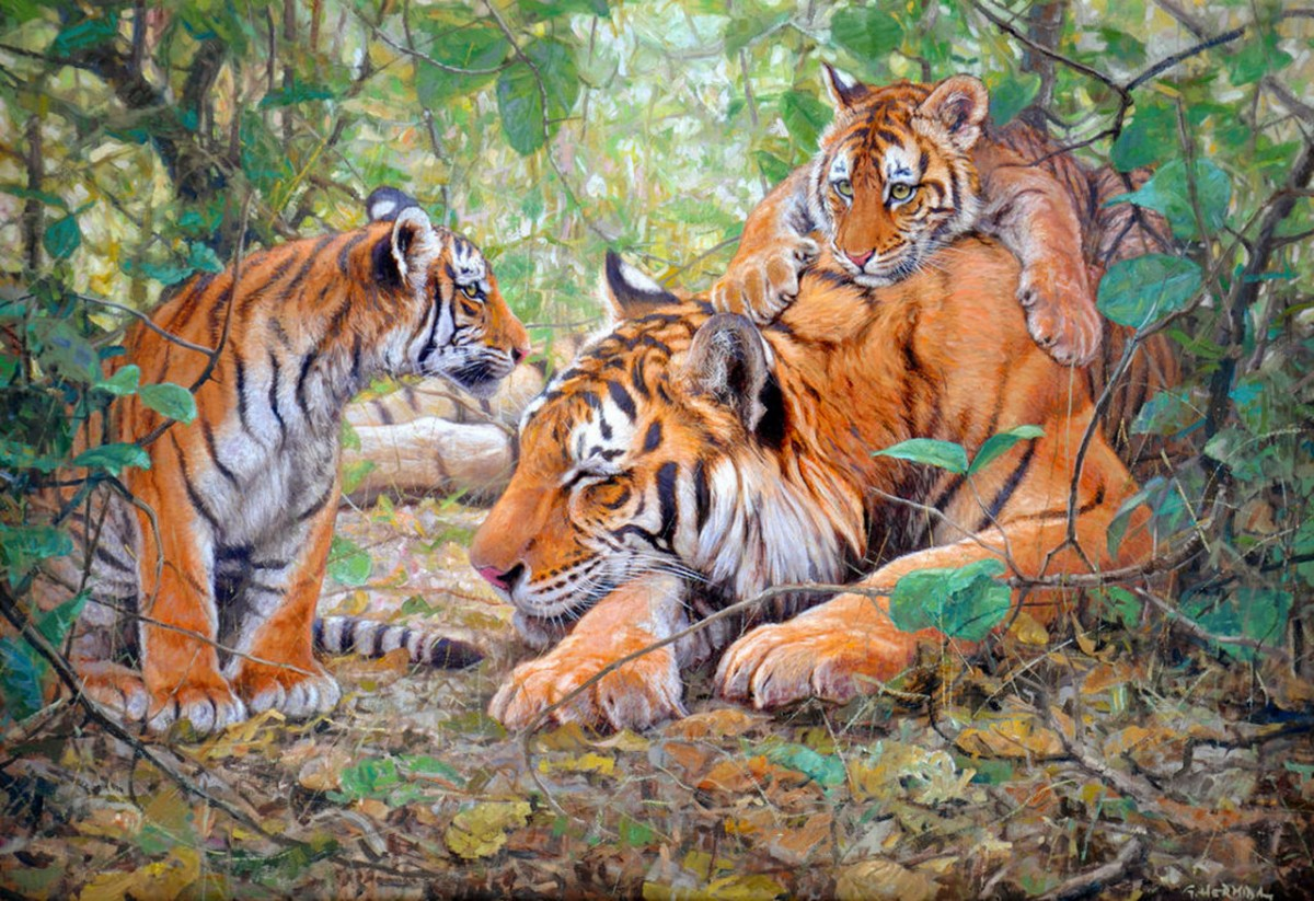 Rompecabezas Recoger rompecabezas en línea - Tigress with cubs