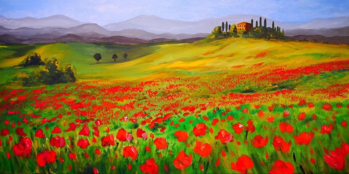 Rompecabezas Recoger rompecabezas en línea - Tuscan poppies