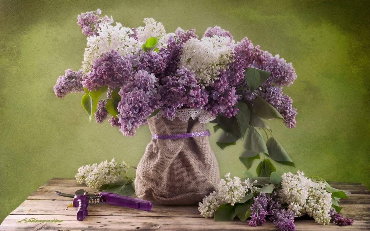 Rompecabezas Recoger rompecabezas en línea - Lilac flowers