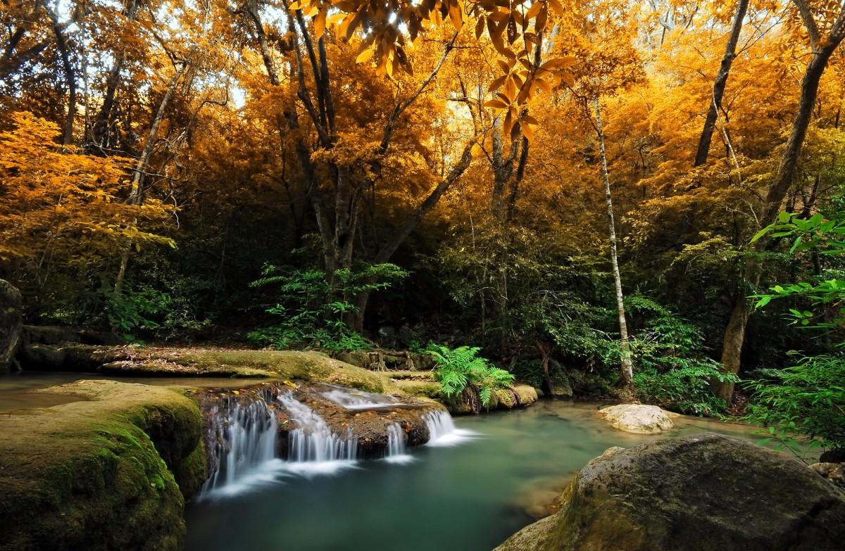 Rompecabezas waterfall