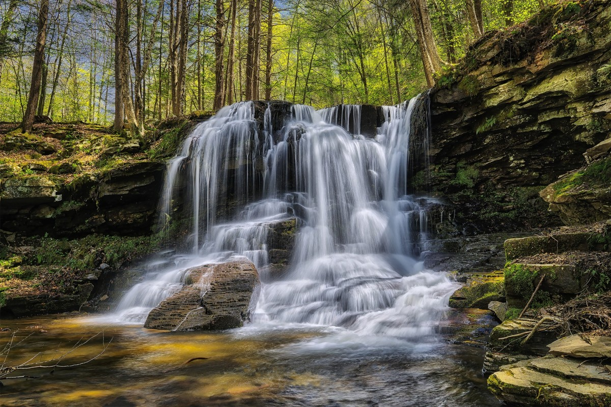 Rompecabezas Recoger rompecabezas en línea - Waterfall in the forest