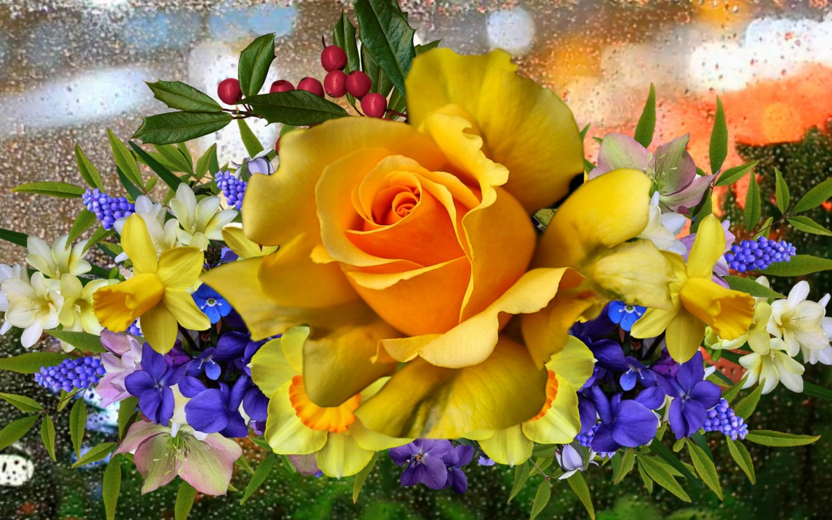 Rompecabezas Recoger rompecabezas en línea - Yellow rose