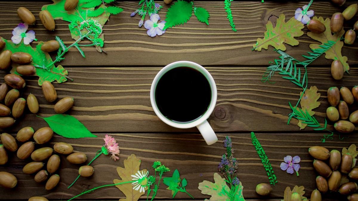 Rompecabezas Recoger rompecabezas en línea - Acorn coffee