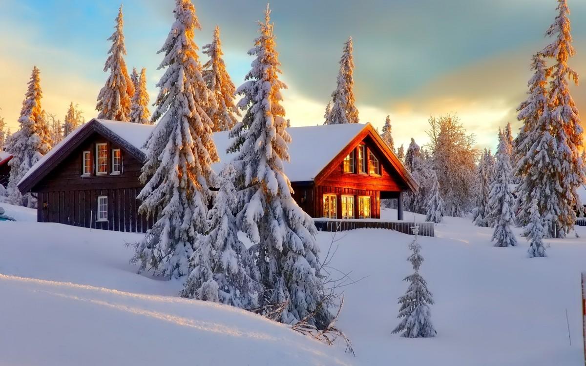 Rompecabezas Recoger rompecabezas en línea - Winter morning