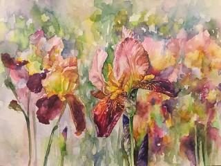 Собирать пазл Watercolor irises онлайн
