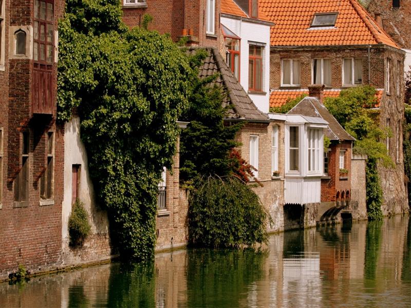 Rompecabezas Belgiya