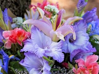 Собирать пазл Buket s gladiolusami онлайн