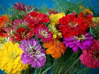 Собирать пазл Bouquet of tiny онлайн
