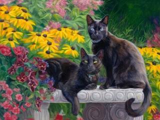 Собирать пазл Black cats онлайн