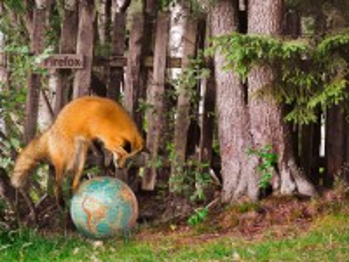 Собирать пазл Firefox онлайн