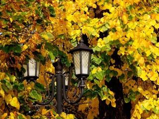 Собирать пазл Lights онлайн