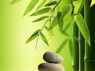 Собирать пазл Stones and bamboo онлайн