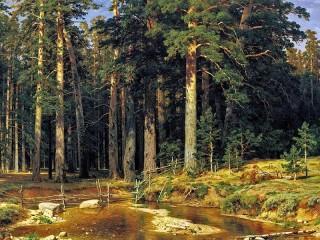 Собирать пазл Mast-tree grove онлайн