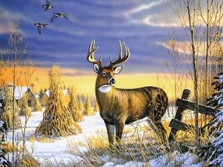 Собирать пазл Forest handsome онлайн