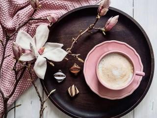 Собирать пазл Still life with Magnolia онлайн
