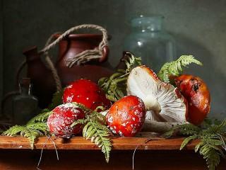 Собирать пазл Still life with fly agaric онлайн