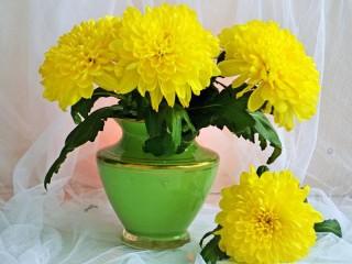 Собирать пазл Delicate bouquet 1 онлайн