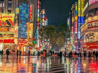Собирать пазл The Lights Of Tokyo онлайн