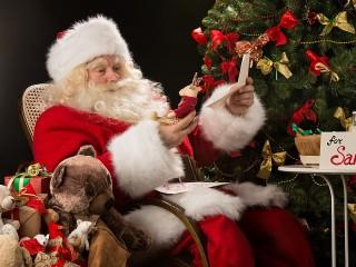 Собирать пазл Reindeer for Santa онлайн