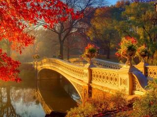 Собирать пазл Autumn haze онлайн