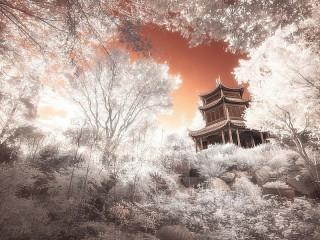 Собирать пазл Pagoda онлайн