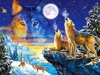 Собирать пазл Full moon онлайн