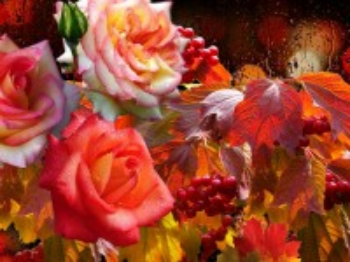 Собирать пазл Roses and viburnum онлайн