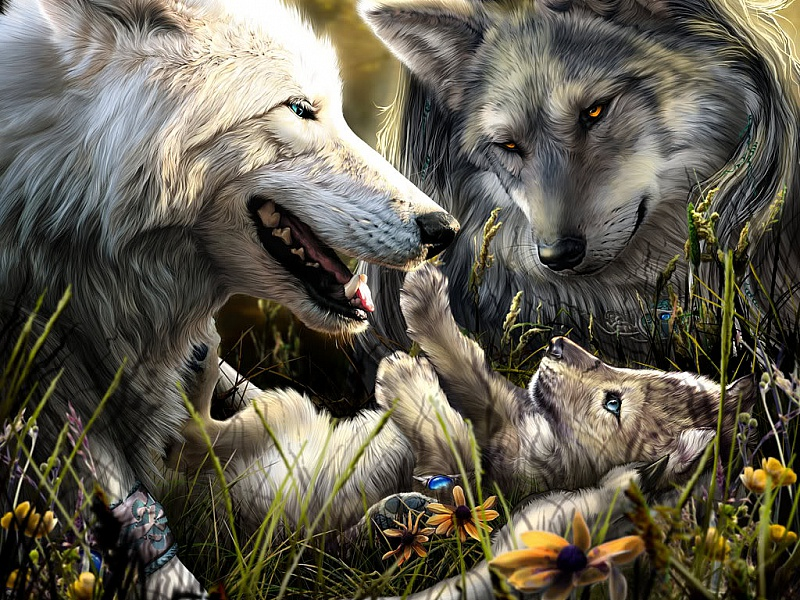 Rompecabezas Recoger rompecabezas en línea - Wolf family