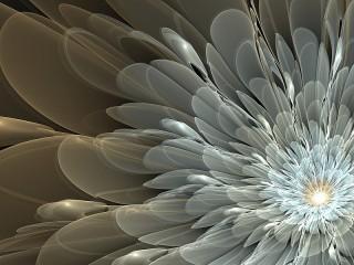 Собирать пазл Silver flower онлайн