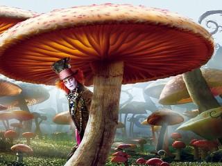 Собирать пазл Hatter and mushrooms онлайн