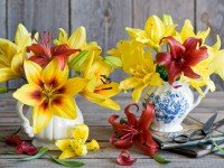 Собирать пазл Solnechnie lilii онлайн