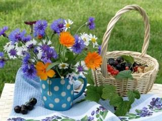 Собирать пазл Morning in the garden онлайн