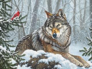 Собирать пазл The wolf and the cardinal онлайн