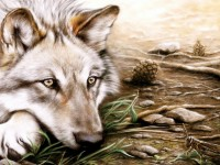 Собирать пазл The wolf and the grasshopper онлайн