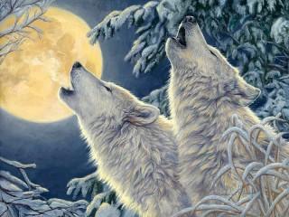 Собирать пазл Wolves and moon онлайн