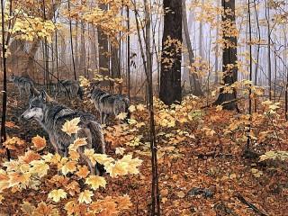 Собирать пазл Wolves in autumn онлайн