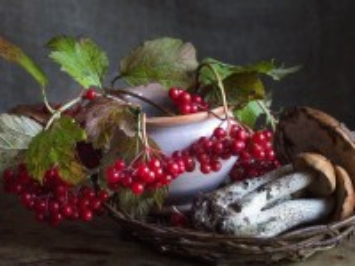Собирать пазл Berries and mushrooms онлайн
