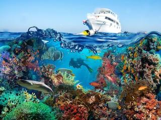 Собирать пазл The yacht and the sea онлайн