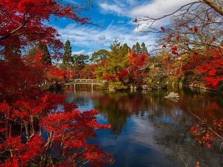 Собирать пазл Japanese autumn онлайн