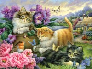 Собирать пазл Funny kittens онлайн