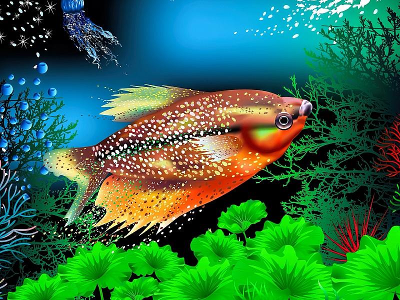 Rompecabezas Recoger rompecabezas en línea - Zhitel akvariuma