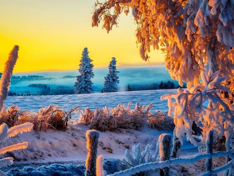 Rompecabezas Recoger rompecabezas en línea - Winter scene